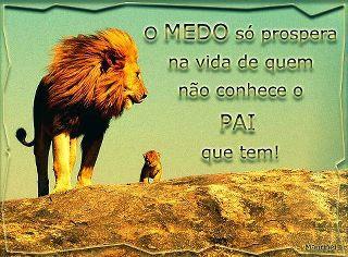 O verdadeiro Leão