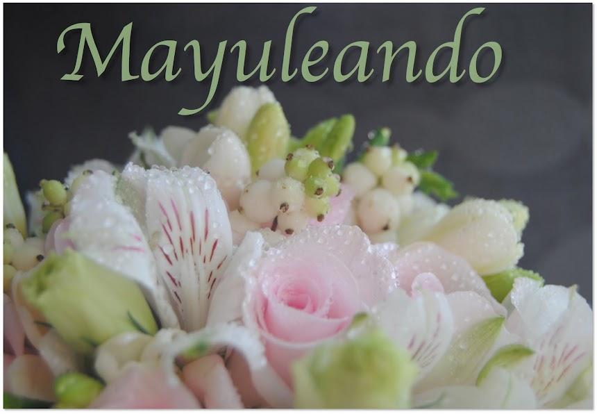 Mayula flores floristeria Zaragoza