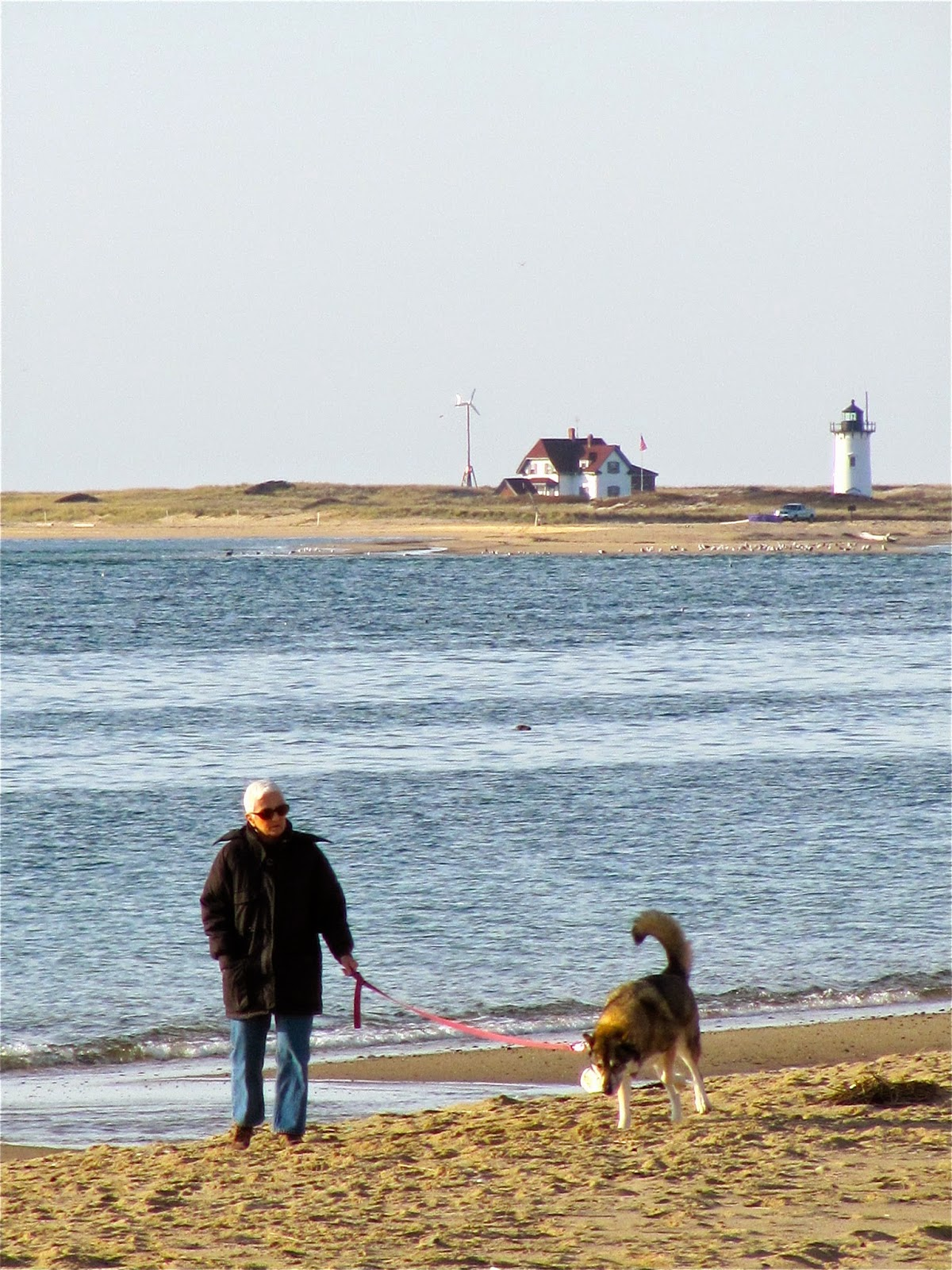 Theyearrounder S Guide To Provincetown December 2014