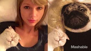 Maria Callizo Monge nos cuenta 5 lecciones de Marketing que ha aprendido de Taylor Swift