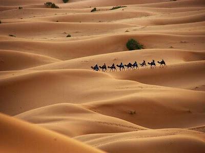 Caravana de Tuaregues ou Berberes cruza as dunas do deserto em seus camelos.