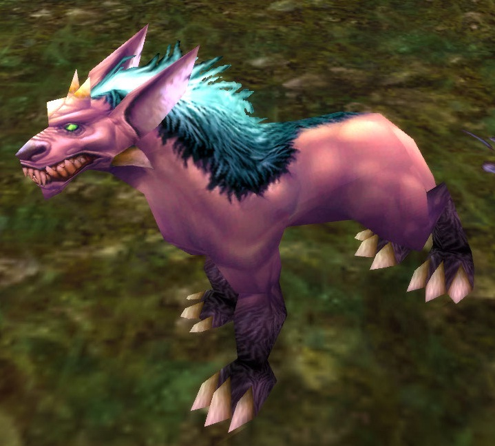 Pets For Hunters Wow Where To Find White Dog