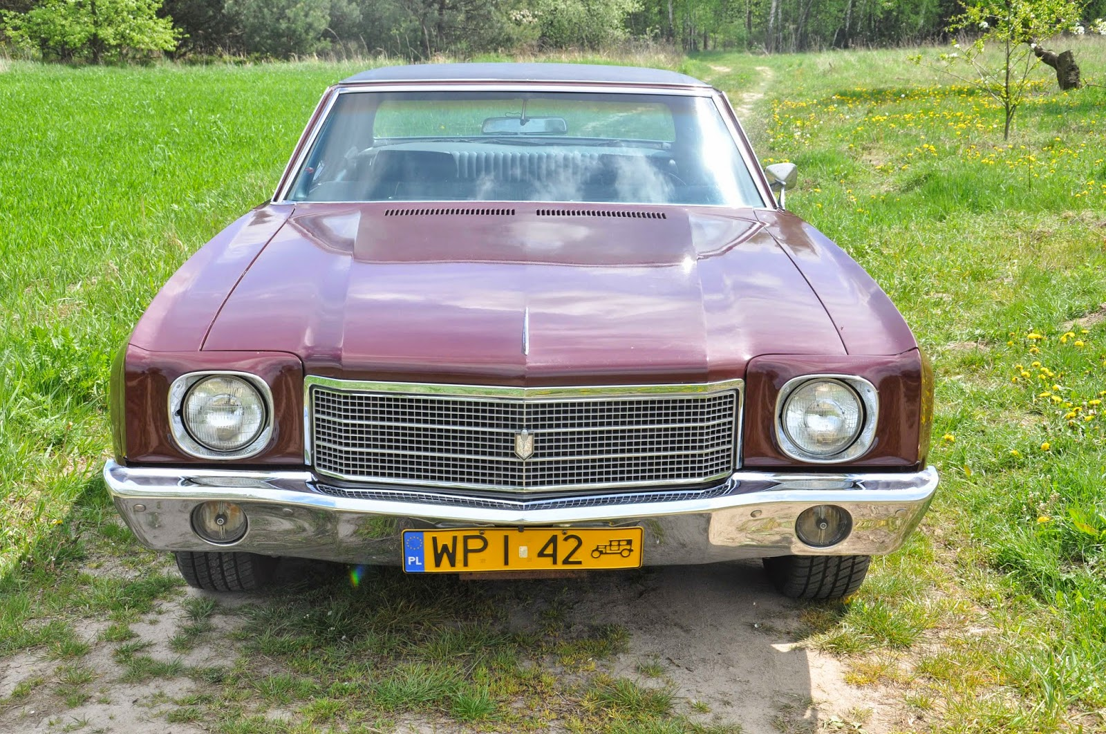 Rebel Rides Behind the Iron Curtain: Unrestored early 1970 Monte ...