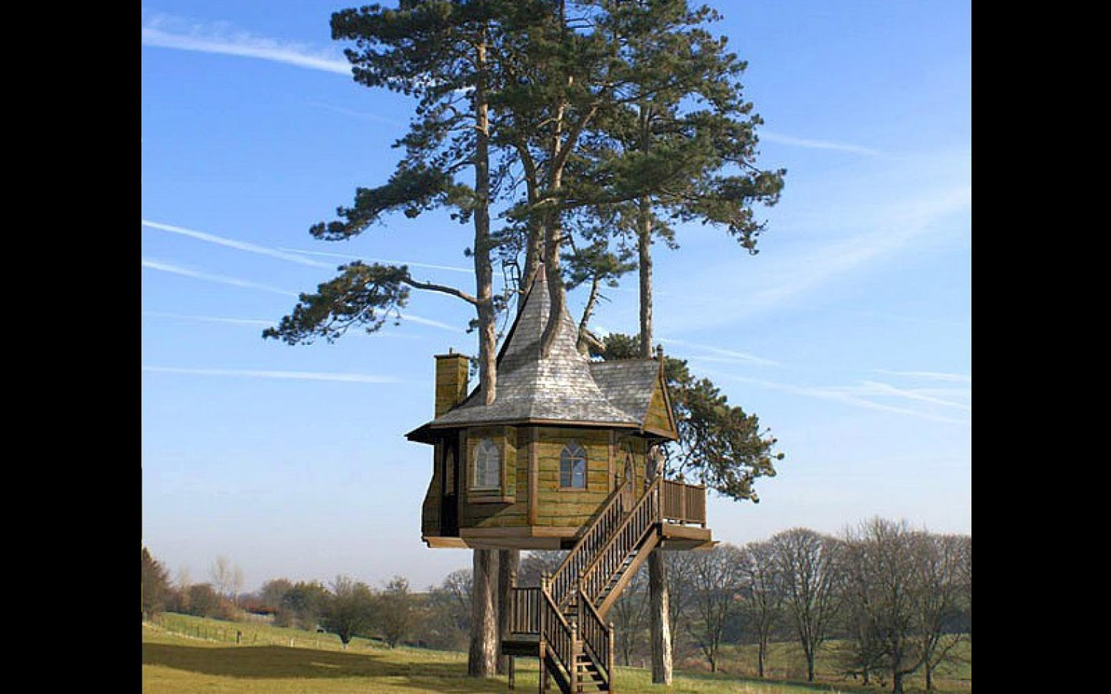 I love tree house real tree house wallpaper 1680x1050 for Tree wallpaper for home