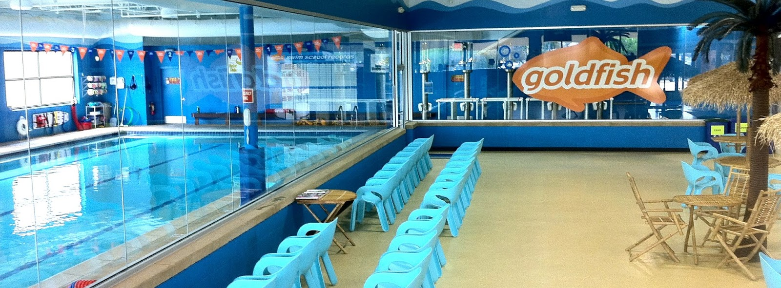 Swimming Lessons in Ann Arbor | Swim School for Kids