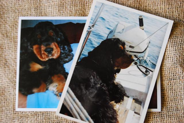 http://sosunnyblog.blogspot.com.es/2013/11/pon-un-woody-en-tu-vida-al-menos-uno.html
