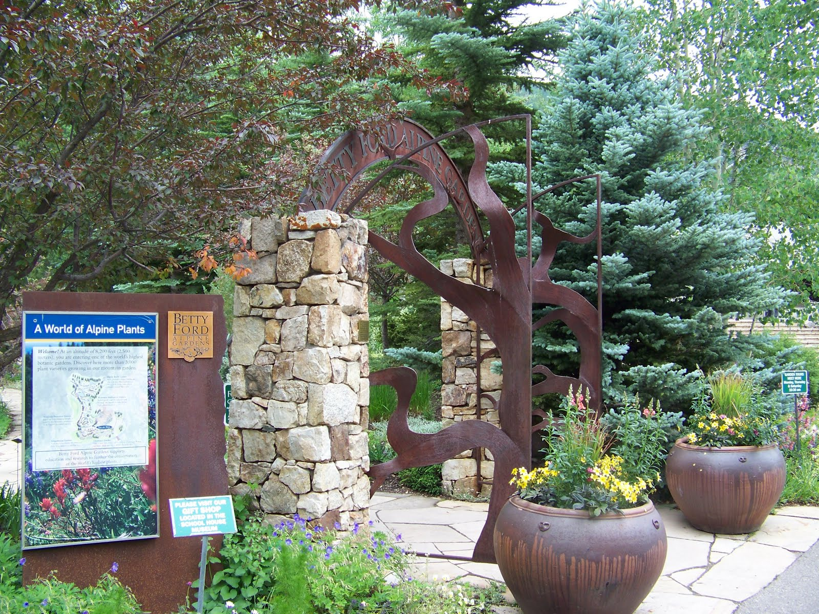 our nature the betty ford alpine garden in vail. Cars Review. Best American Auto & Cars Review