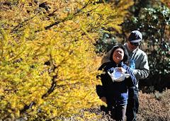 Yunnan 云南 18-10-2012