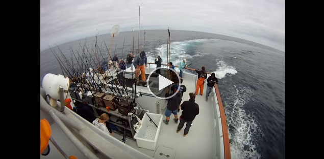 How to fish great day bluefin tuna for Best day to fish