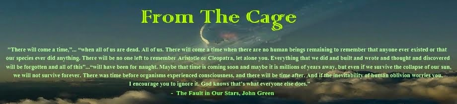 From The Cage
