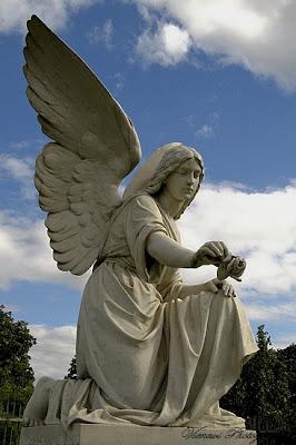 Zdjęcie przedstawiające posąg anioła z różą w ręku, znajdującego się na cmentarzu w Bydgoszczy, inny punkt widzenia, zdjęcie z boku, kadr pionowy