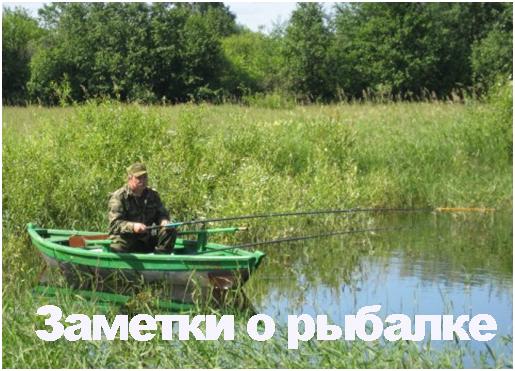 Блог старого-старого рыбака, который ловил удочкой рыбу тридцать лет и  три года