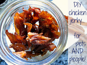 easy recipe for homemade chicken jerky -- for people and dogs