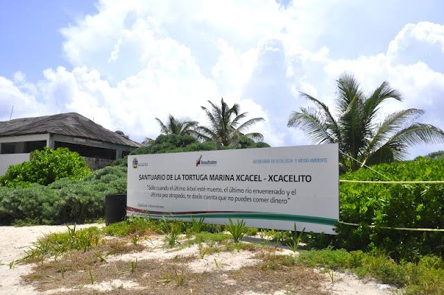 riviera maya con ninos