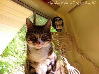 May Pinterest Challenge; strange selfie, pin your strange selfie. This is Maridan Valor's cat Frisky starring in her strange selfie with a skeleton, Night Sea 90.