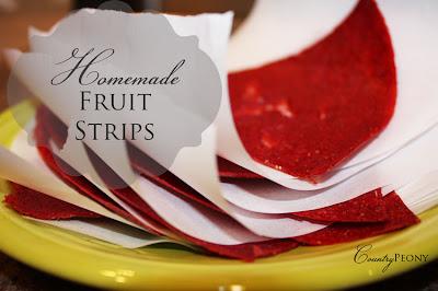 Homemade Fruit Strips