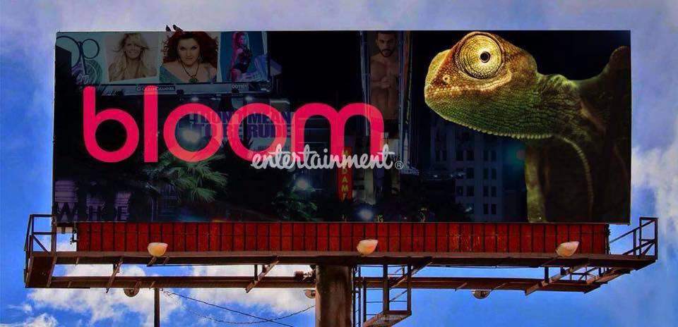 Bloom Entertainment