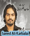 http://72jafry.blogspot.com/2014/04/saeed-ali-karbalai-nohay-2011-to-2015.html