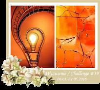 Aktualne wyzwanie / Current challenge