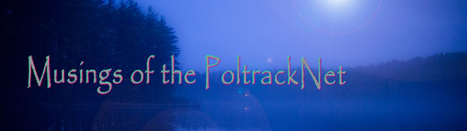 Musings of the PoltrackNet