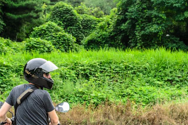Korea Pohang Motorcycle forest