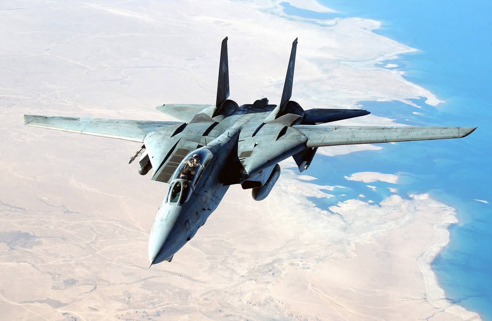 fastest rc planes with F 14 Tomcat on 6227019 200 Mph in addition First Big Rc Turbine Model Jet Indoor Flight also Homebuilt experimental as well F 14 Tomcat further Downloads.