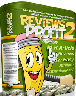 Review writing business