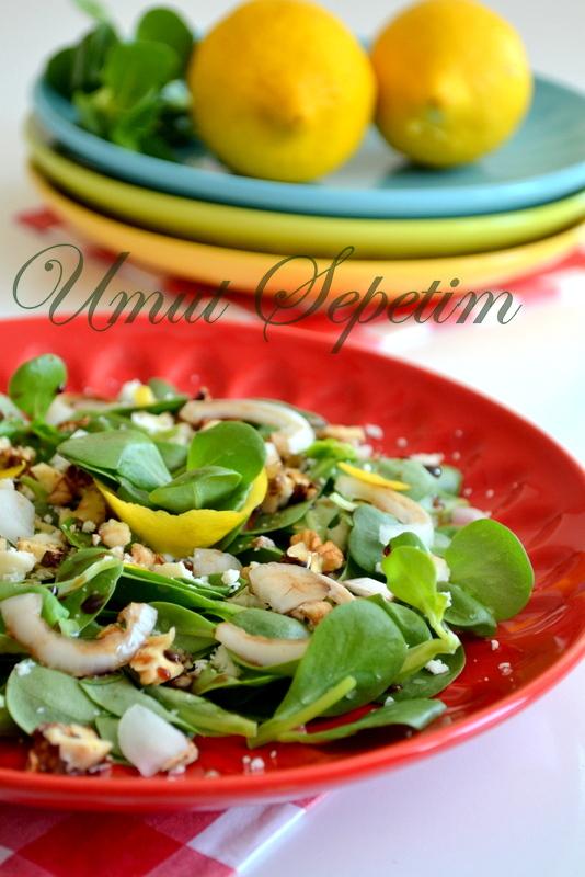 peynirli salata,yaz salataları,salata tarifleri,pratik yemekler,mevsim salatası