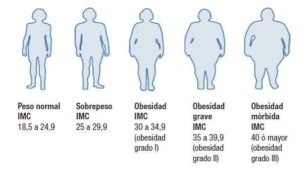 Dos como quemar grasa del abdomen sin ejercicio los edulcorantes:
