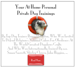 Your At Home Dog Training