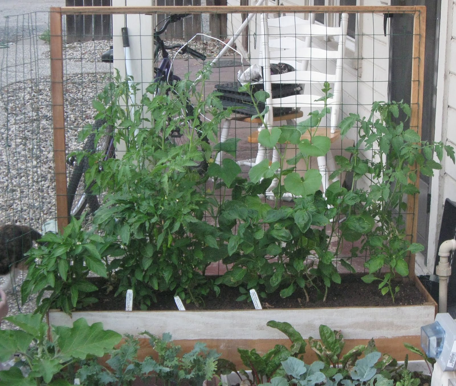 Growing Vegetables In Urban Planters: My First Garden: Vertical Gardening: A Solution For Urban