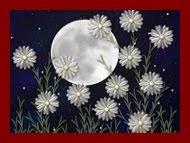 Flor na estrela
