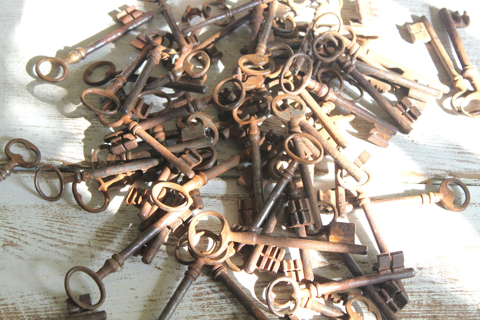 52 flea 71 keys and more for Table induction 71 x 52