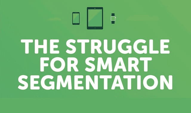 The Struggle for Smart Segmentation