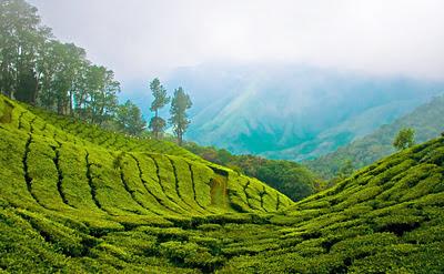 Kerala Tamilnadu Special Tour
