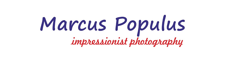 MARCUS POPULUS