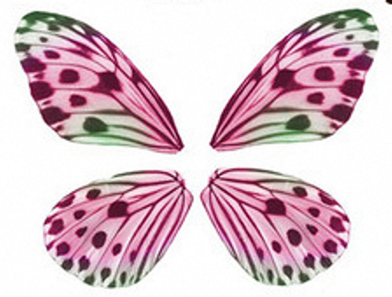 Dibujos y Plantillas para imprimir Alas de mariposa para imrimir
