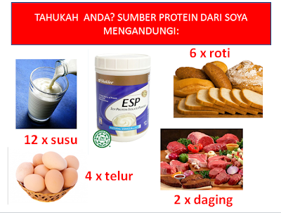 energizing soy protein shaklee