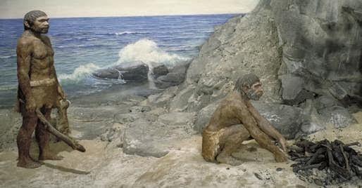 Homo neanderthalensis caracteristicas yahoo dating 1