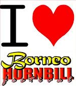 Fan Page: Borneo Hornbill Festival