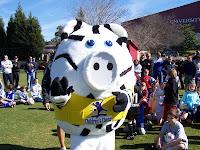 Photo of Children's Chance Mascot Zig the Pig