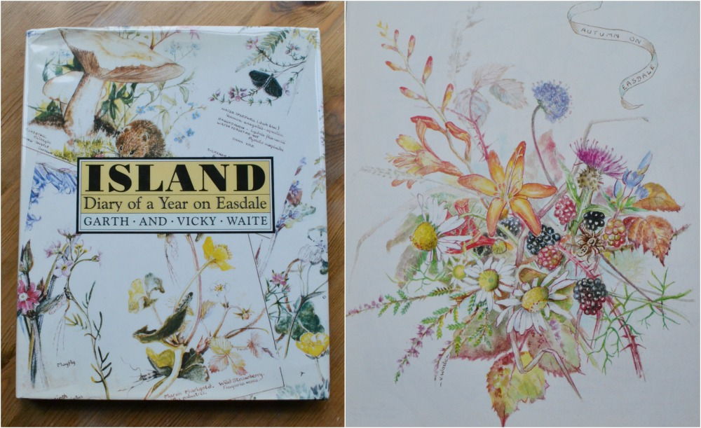 island book illustrations flowers nature
