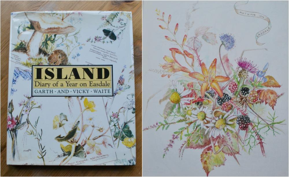 island book illustrations flowers nature