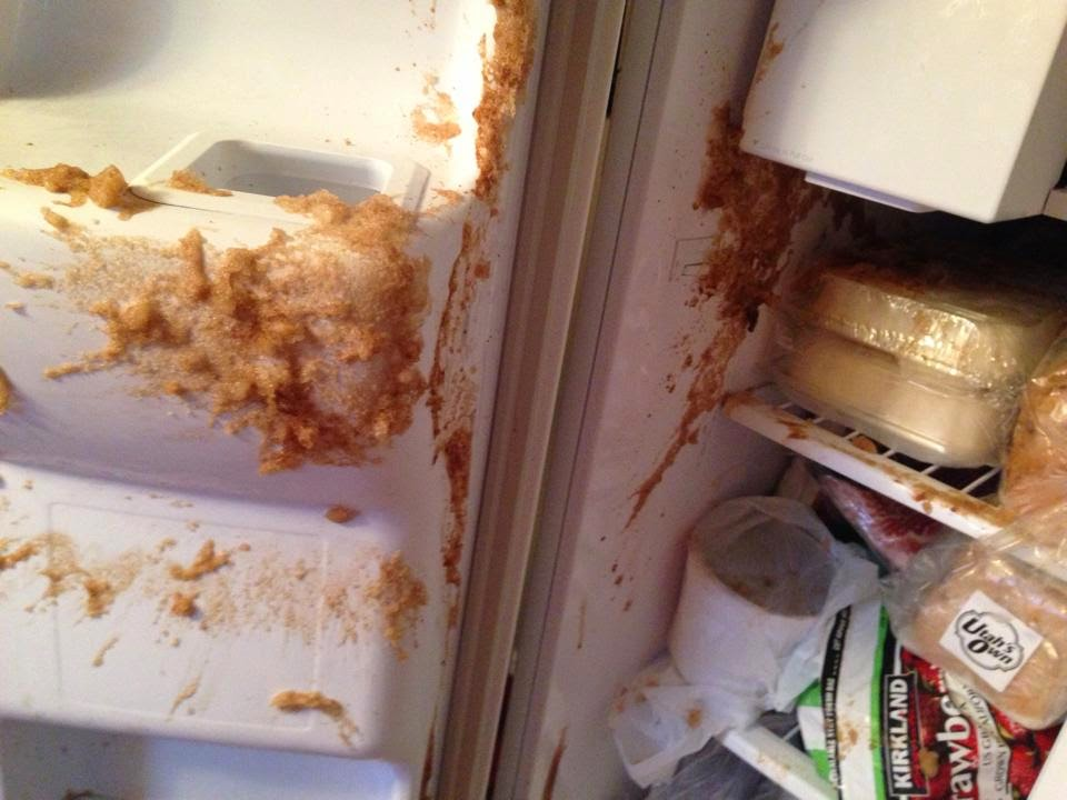 how to clean exploded soda in freezer
