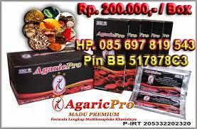 AgaricPro Agen Herbal Termurah