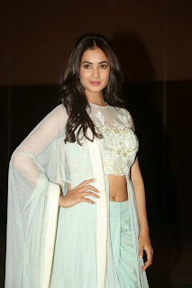 Actress Sonal Chauhan Pictures at Pandaga Chesko Audio Release  12