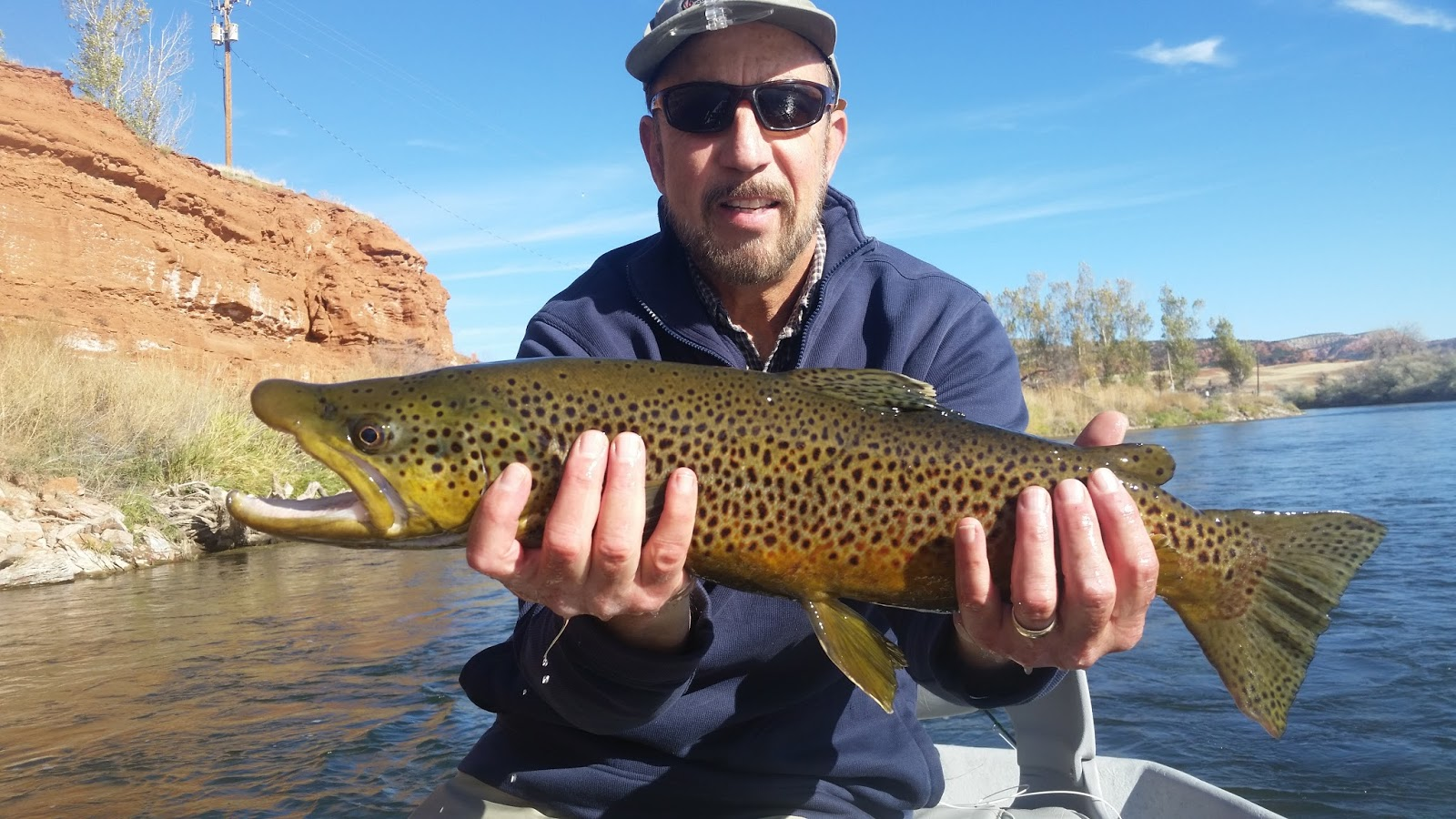 Owl creek flies bighorn river thermopolis fly fishing for Bighorn river fishing report