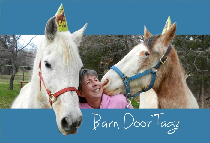 Leah Fry - Barn Door Tagz - Horses and Life
