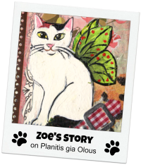 "ZOE&#39;S STORY ON ""PLANITIS GIA OLOUS"""