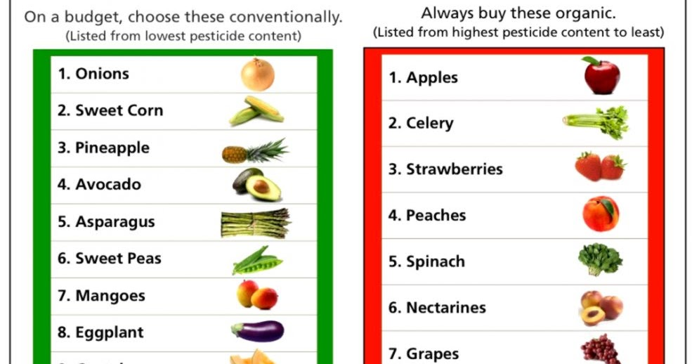 Vegetable List A Z With Pictures Amazing Wallpapers